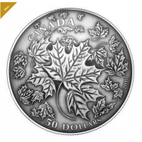 5 oz. Pure Silver Convex Coin - Maple Leaves in Motion - Mintage: 1,500 (2018) No. 165138
